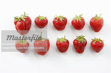 Zehn Erdbeeren