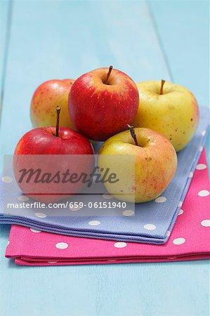 Pommes biologiques (Cultivars : Cortland et Boiken)