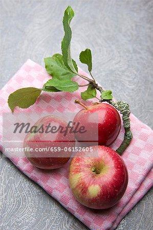 Rote Äpfel auf ein Küchentuch