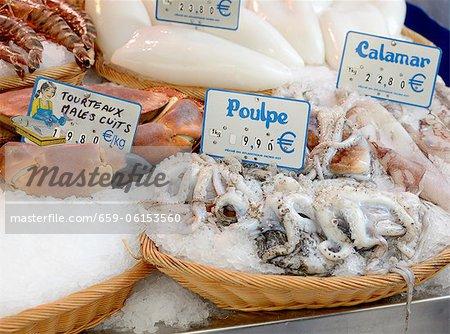 Calmars frais au marché