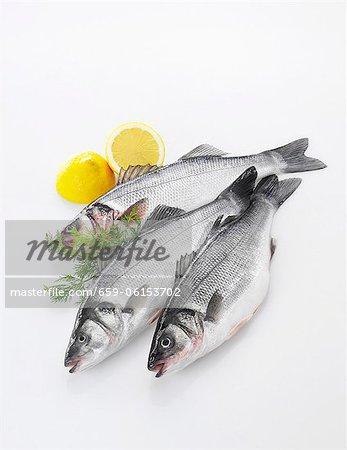 Three fresh sea bass, lemons and dill
