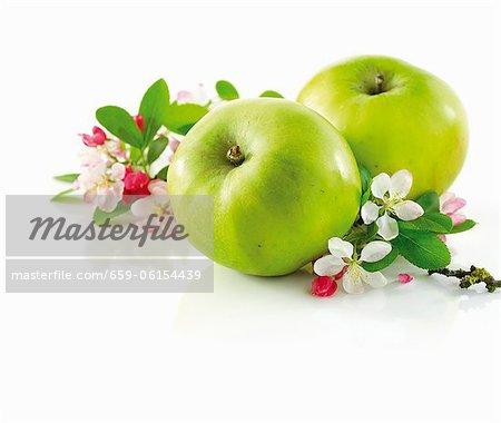 Direction avec fleur de pommier et pomme verte