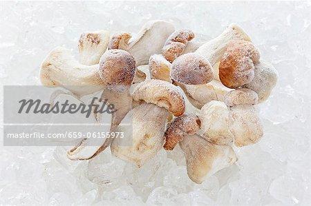 Frozen porcini mushrooms