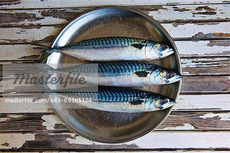 Nahaufnahme von Teller mit Makrelen