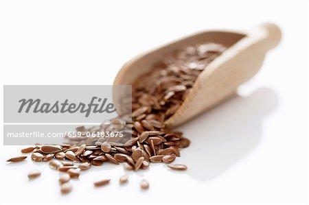 Graines de lin sur une pelle en bois