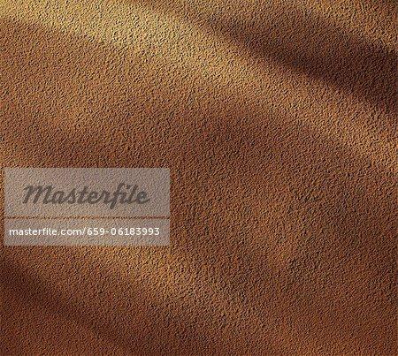 Cannelle en poudre (zoom macro)