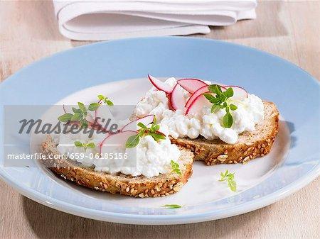 Fromage cottage et les radis sur pain