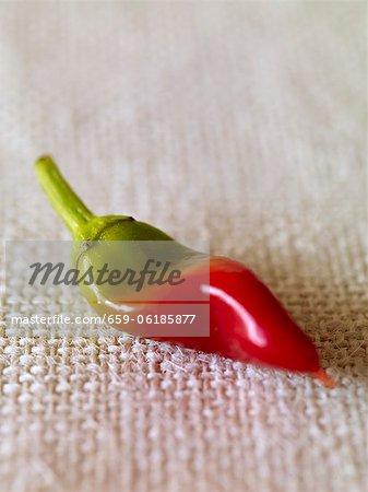 Ein Chili-Pfeffer