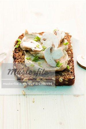 Une tranche de pain complet garnie de champignons répartis