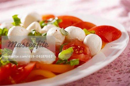 Salade de tomates et de mozzarella au basilic