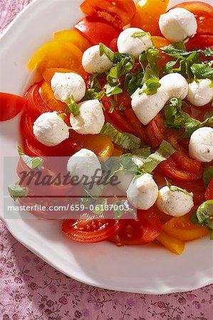 Salat mit Tomaten und Mozzarella mit Basilikum