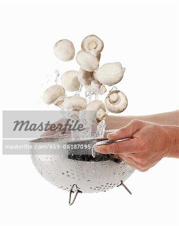 Champignons à laver dans une passoire