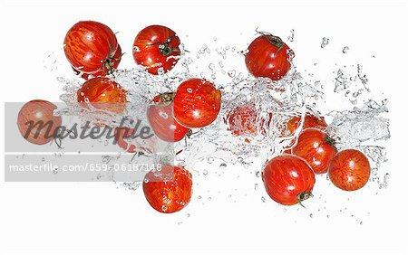 Tomates tigre avec une éclaboussure de l'eau