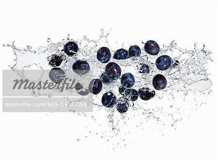 Prunes avec un spalsh de l'eau