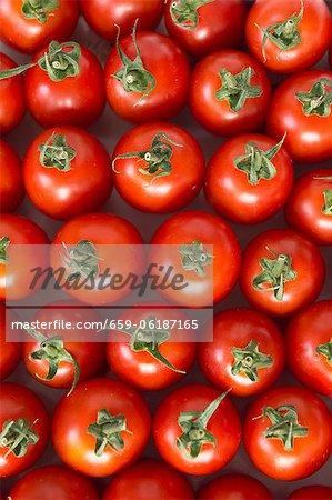 Roma Tomaten (von oben gesehen)