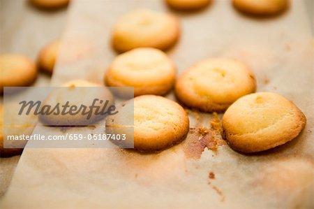 Butter Kekse auf Backpapier