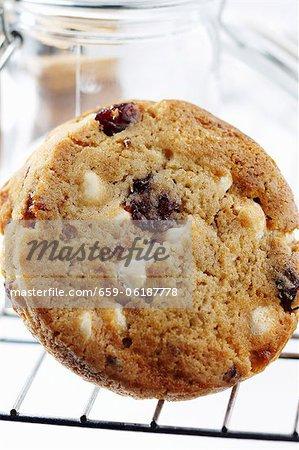 Weiße Schokolade-Chip, Cranberry, Macadamia-Nuss-Cookie auf einem Gestell mit Kühlung