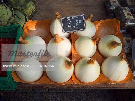 Des oignons géants suisses sur le marché de Carouge est à Genève en Suisse