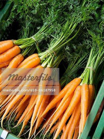 Les grappes de carottes sur le marché de Carouge est à Genève en Suisse
