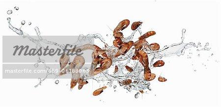 Crevettes de la mer du Nord avec une éclaboussure de l'eau