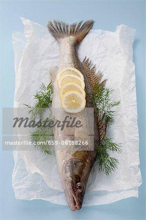 Un poisson avec citron et aneth sur papier parchemin