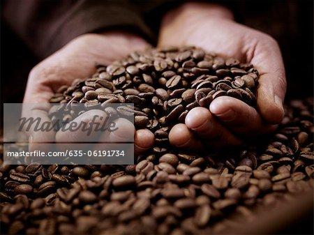 Gros plan des mains ventouses de grains de café