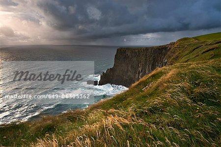 Tall grass growing on coastal cliffs