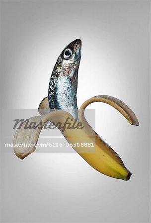 A fish in a banana