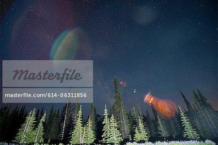 Lens flare over trees, Mount Rainier, Washington, USA