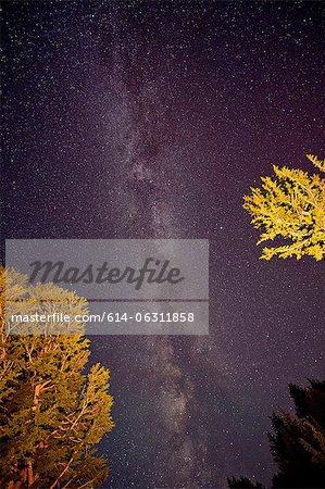 The Milky Way, Washington, USA