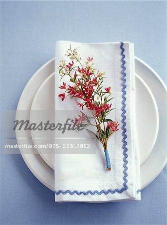 Teller, Servietten und Blumen dekoration