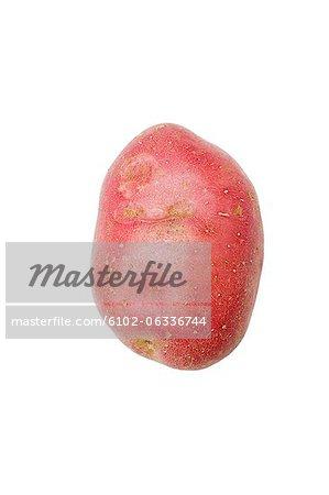 Studioaufnahme der Süßkartoffel