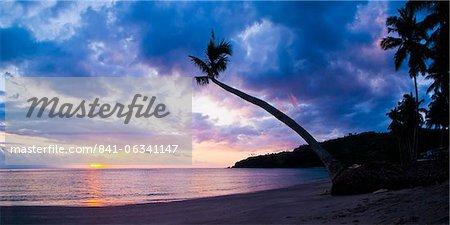 Silhouette d'arbre palmier au coucher du soleil sur le paradis tropical de l'île de Lombok, Indonésie, Asie du sud-est, Asie