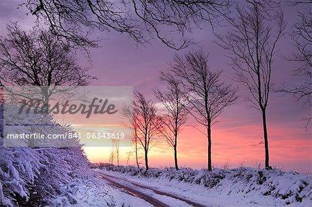 Chemin de campagne couverte de neige à l'aube, le Parc National d'Exmoor, Somerset, Angleterre, Royaume-Uni, Europe