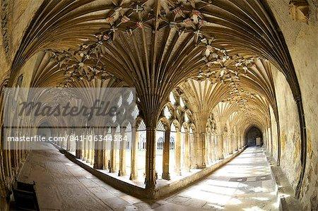 Le grand cloître, cathédrale de Canterbury, patrimoine mondial de l'UNESCO, Canterbury, Kent, Angleterre, Royaume-Uni, Europe