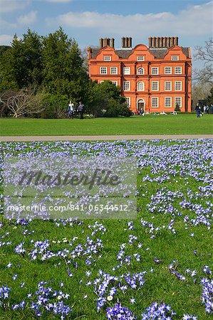 Gloire des fleurs de neige dans les pelouses près du Palais de Kew au printemps, Royal Botanic Gardens, Kew, patrimoine mondial de l'UNESCO, Londres, Royaume-Uni, Europe