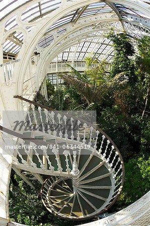 Escalier en colimaçon dans la maison tempérée Royal Botanic Gardens, Kew, patrimoine mondial de l'UNESCO, Londres, Royaume-Uni, Europe