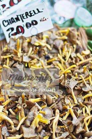 Girolles fraîches à un marché