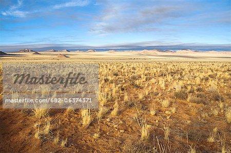 Paysage de désert, désert du Namib, Aus, Karas, Namibie