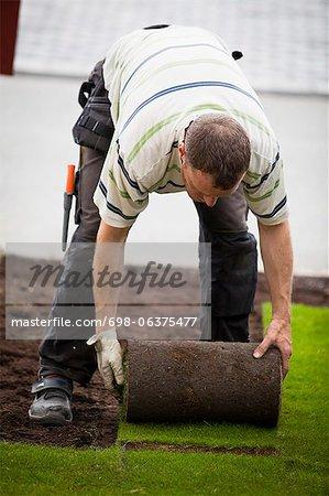 Mid homme adulte roulant nouveau gazon de graminées à pelouse