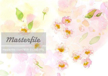 Cerisier en fleurs aquarelle