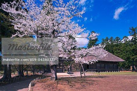 Tsuneyuki Motsuji Hall, Hiraizumi, la préfecture d'Iwate, Japon