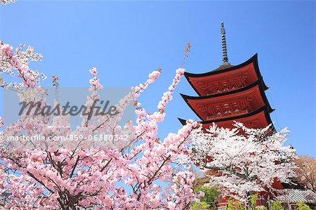 Cinq étages pagode, Miyajima, Itsukushima, Japon