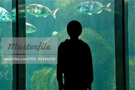 Garçon à Aquarium