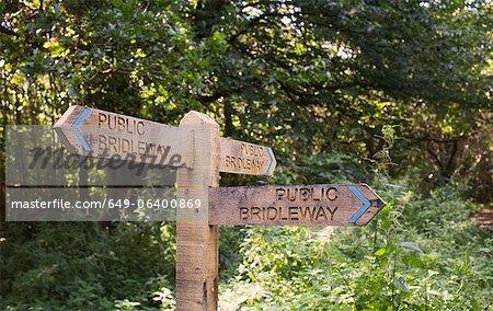 Signaux routiers sur la route forestière