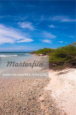 Littoral pittoresque, Arashi Beach, Aruba, petites Antilles, des Caraïbes