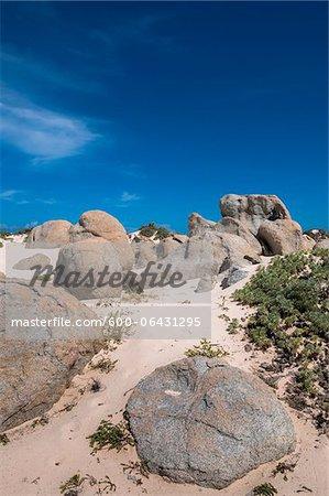 Pittoresque avec des Dunes de sable et de rochers, Aruba, Lesser Antilles, Caraïbes