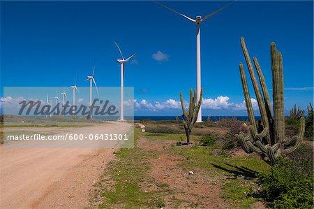Wind Turbines et Cactus par chemin de terre, petites Antilles, Aruba, Caraïbes