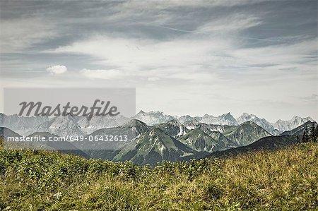 Montagnes enneigées et les champs herbeuses