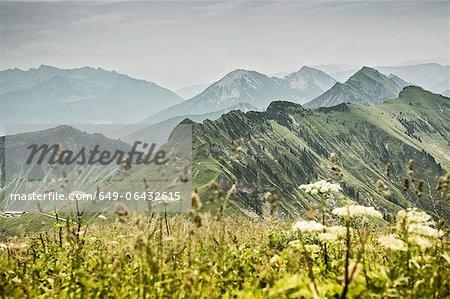 Schneebedeckte Berge und grünen Felder